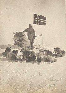 Roald Amundsen and his dog team at the South Pole