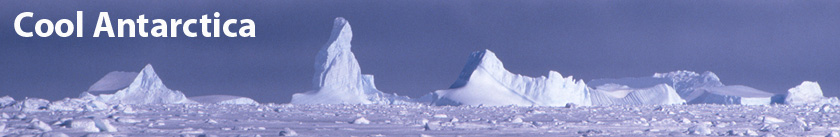Cool Antarctica header